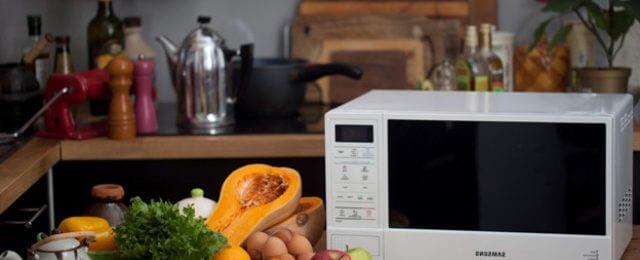 Как выбрать микроволновую печь для дома и не переплатить лишние деньги